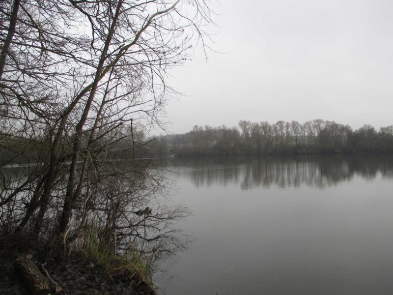 Le bassin de Trévoix - 20 janvier 2019 - Marie-Christine NG